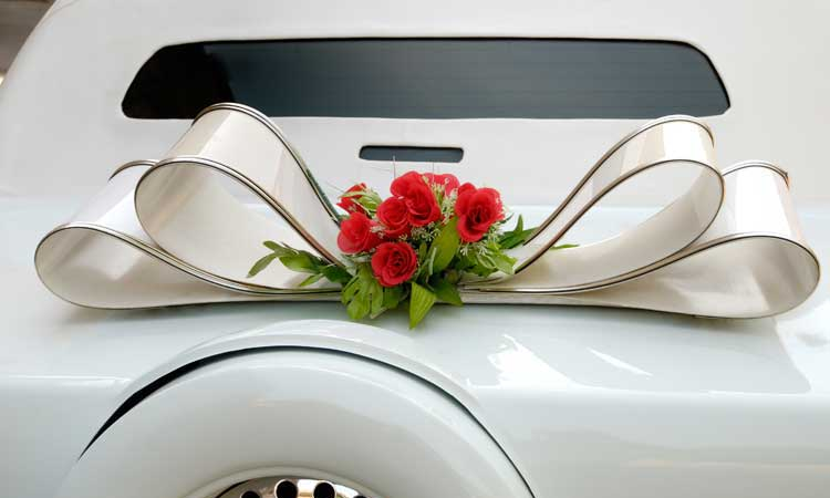 Houston Galleria Limousine - Proms & Homecoming Services